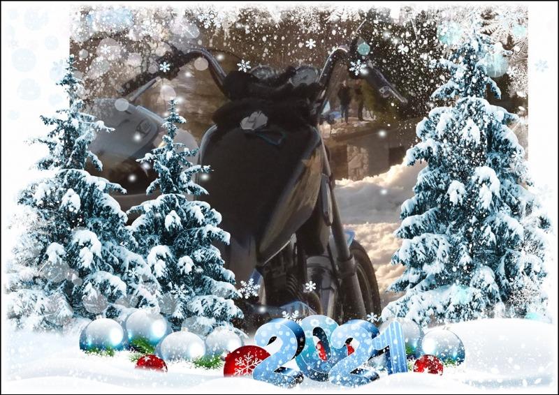my_photo_christmas-849.jpg