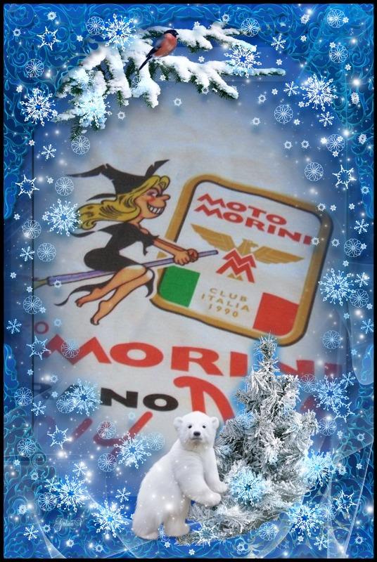 my_photo_christmas-874.jpg